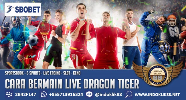 Cara-Bermain-Live-Dragon-Tiger